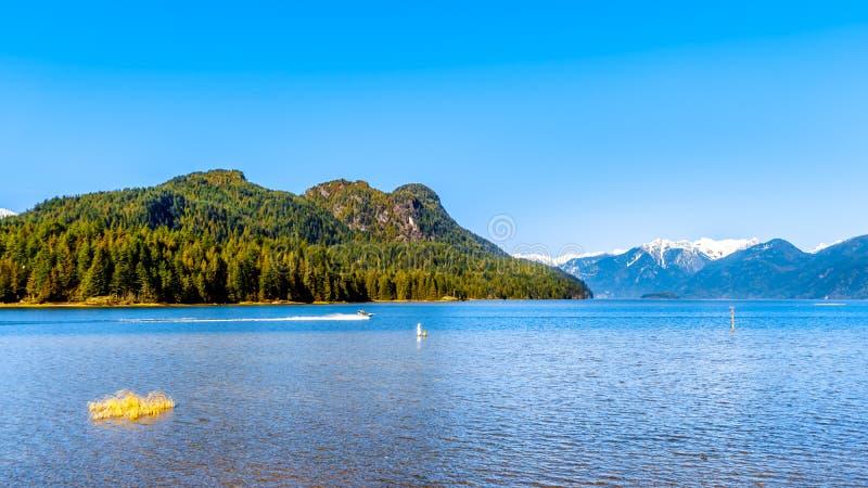 Le titre de bateau de pêche dans Pitt Lake avec la neige a couvert des crêtes de la chaîne de montagne de côte photographie stock libre de droits