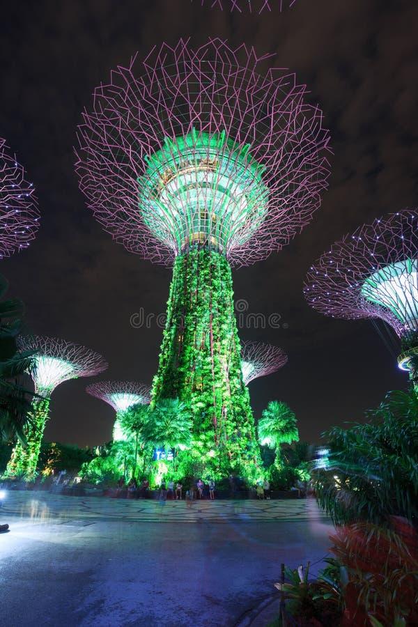 Le touriste non identifié a visité la lumière des jardins par la baie à proche photos stock