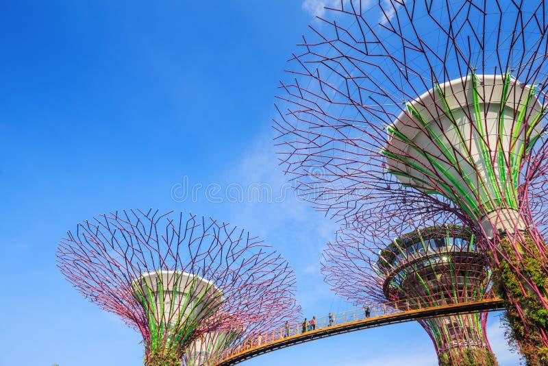 Le touriste non identifié a visité skyway des jardins par la baie au péché photos stock
