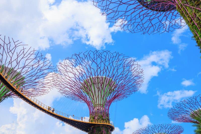 Le touriste non identifié a visité skyway des jardins par la baie au péché images libres de droits