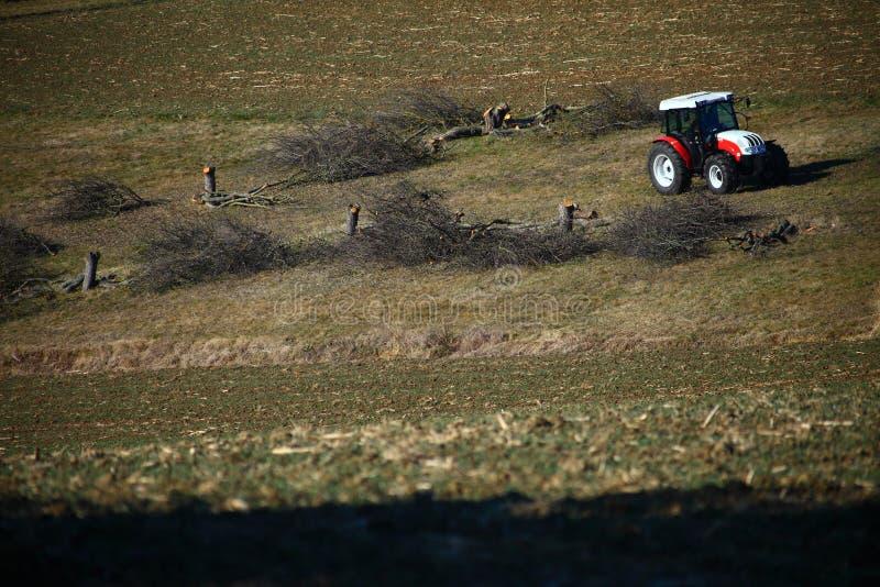 Le tracteur et certains ont coupé des arbres photos libres de droits