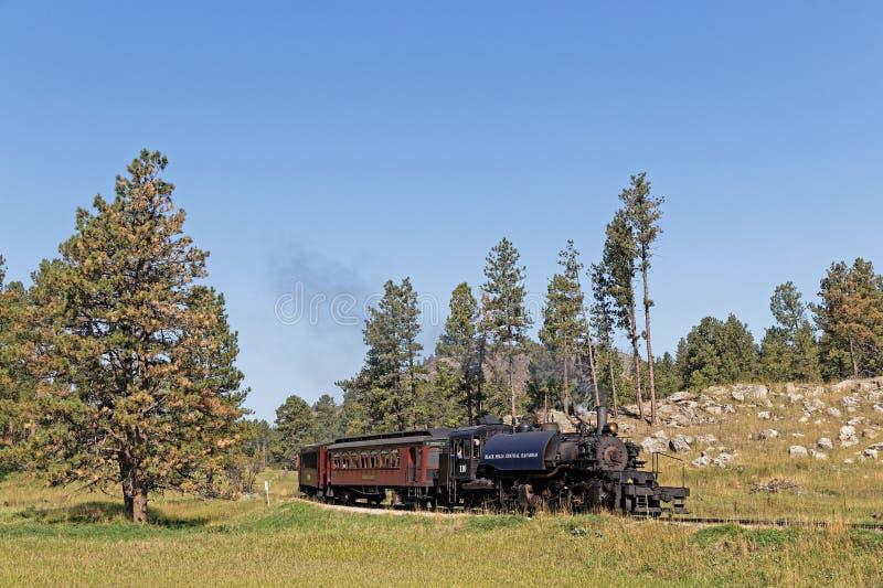 Le train croise la prairie photo stock