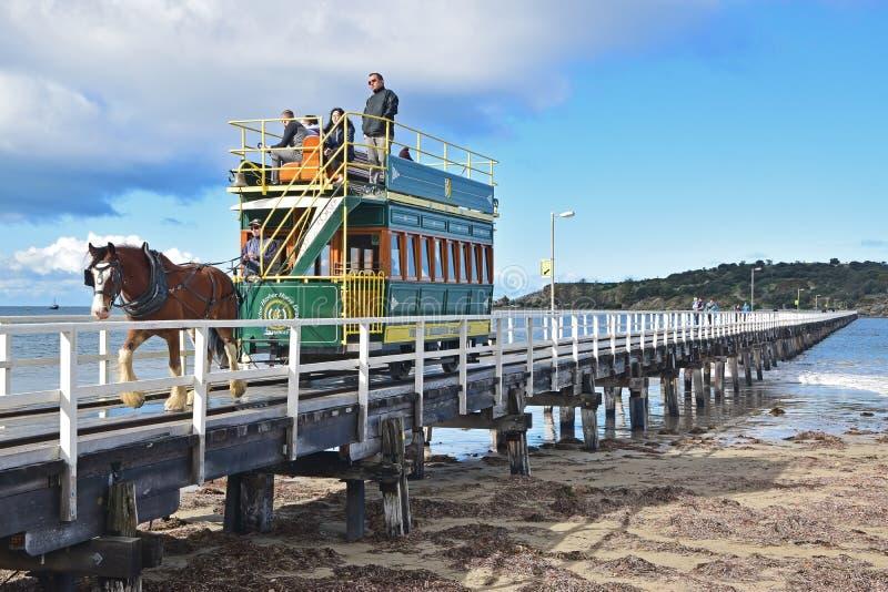 Le tram hippomobile a tiré par le cheval de Clydesdale le long de la chaussée de l'île de granit à Victor Harbor image stock