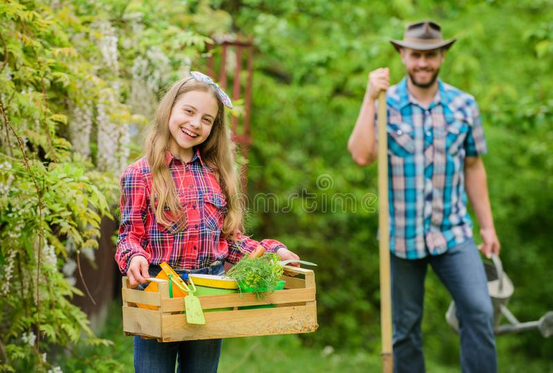 Le travail avec des usines est grand plaisir ?cologie Outils de jardinage neufs, plateau de canne Peu fille et papa heureux d'hom photographie stock