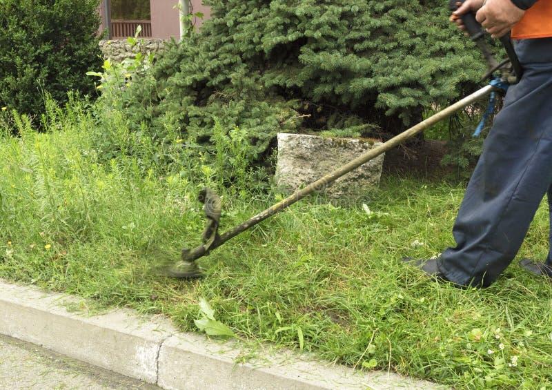 Le travailleur coupe la haute herbe avec une herbe industrielle de règlage d'essence photo stock