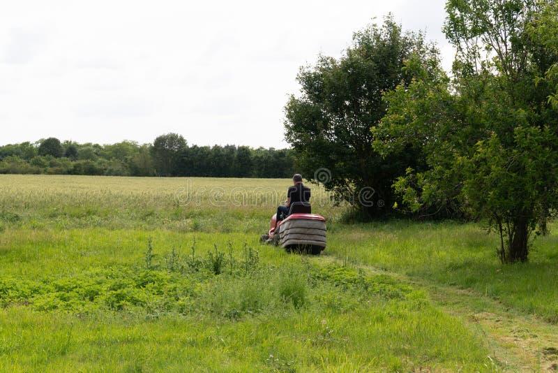 Le travailleur professionnel d'homme de tondeuse à gazon a coupé l'herbe images stock