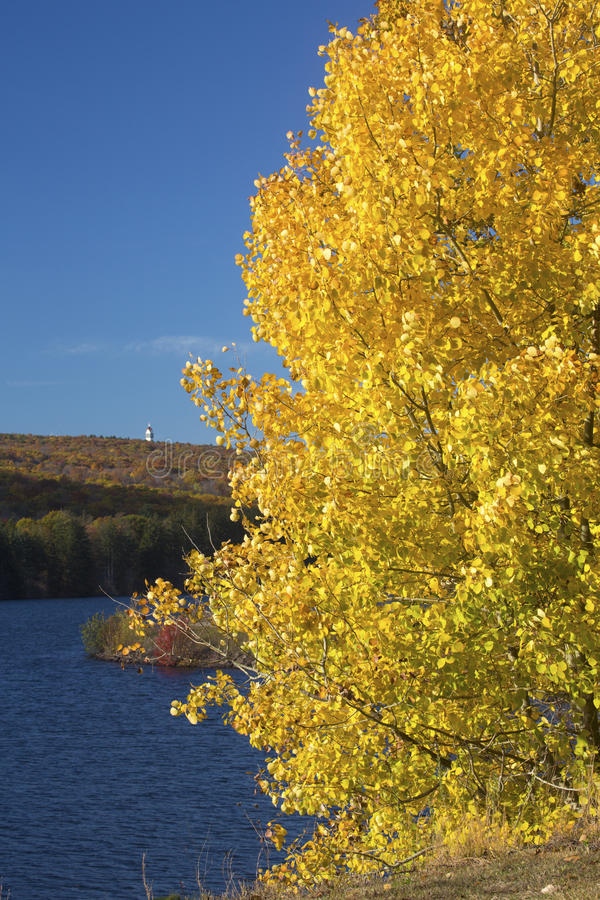 Le tremble d'or encadre une tour au réservoir occidental de Hartford, Connecti photographie stock libre de droits