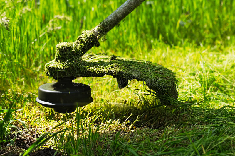 Le trimmer de pelouse d'essence fauche l'herbe verte juteuse photo libre de droits