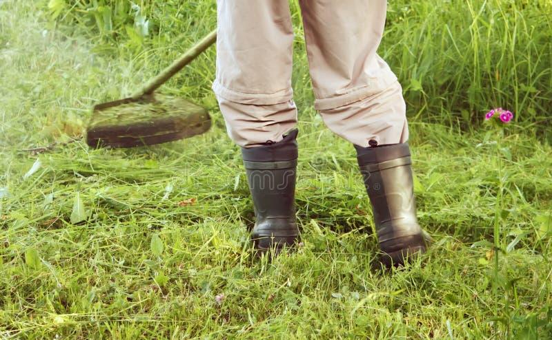 Le trimmer de pelouse d'essence fauche l'herbe verte juteuse sur une pelouse un jour ensoleillé d'été images stock