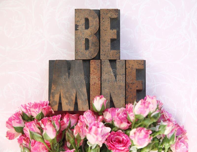 Le type en bois soit le mien et de petites roses photographie stock