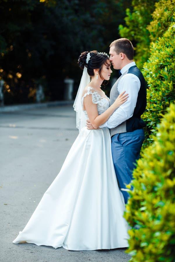 Le type et la fille sourient ? l'un l'autre Jeunes couples les épousant classiques photos stock