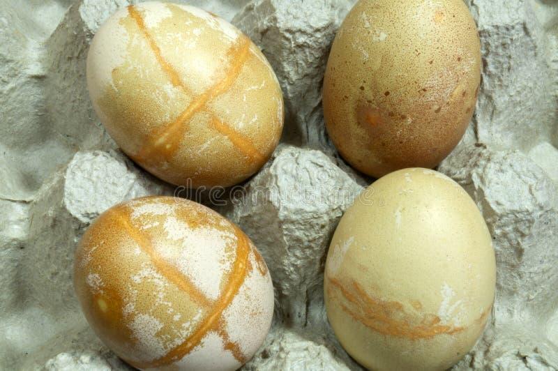 Le uova hanno arrotondato le forme immagine stock