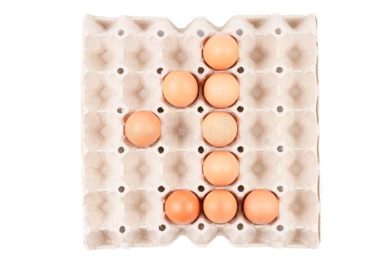 Le uova marroni crude del pollo nell'assomigliare sistemato scatola del vassoio del contenitore di carta al numero è ` del ` 1 fotografia stock libera da diritti