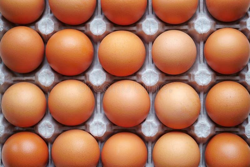 Le uova si trovano in un vassoio, colore marrone, vista superiore fotografia stock libera da diritti