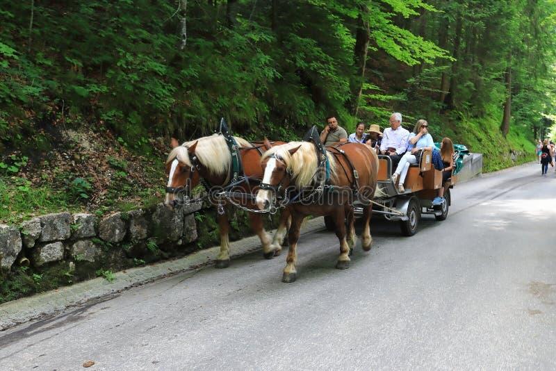 Le véhicule armé par des couples des chevaux est les personnes chanceuses sur les routes alpines de montagne photos stock