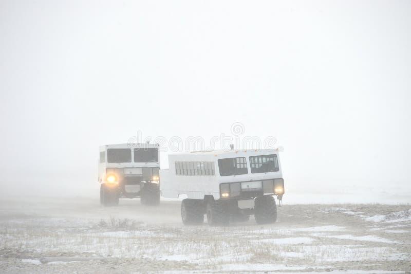 Le véhicule tout-terrain pour la neige se déclenche à une tempête de neige de neige dans la toundra Voiture spéciale pour le safa photo libre de droits