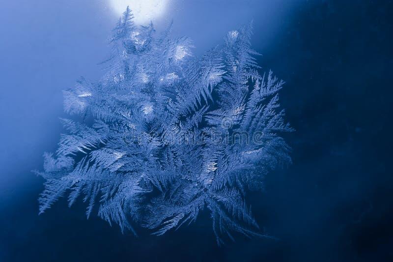 Le vacanze invernali condiscono il concetto del mondo di fantasia: La macro immagine dei cristalli di ghiaccio naturale modella s immagine stock