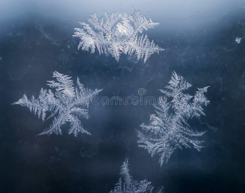 Le vacanze invernali condiscono il concetto del mondo di fantasia: La macro immagine dei cristalli di ghiaccio naturale modella s fotografia stock libera da diritti