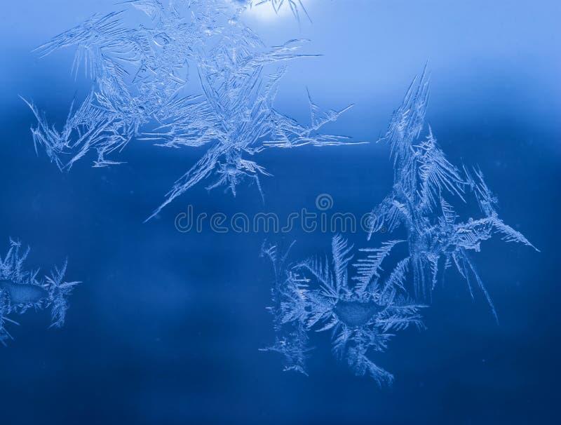 Le vacanze invernali condiscono il concetto del mondo di fantasia: La macro immagine dei cristalli di ghiaccio naturale modella s fotografie stock libere da diritti