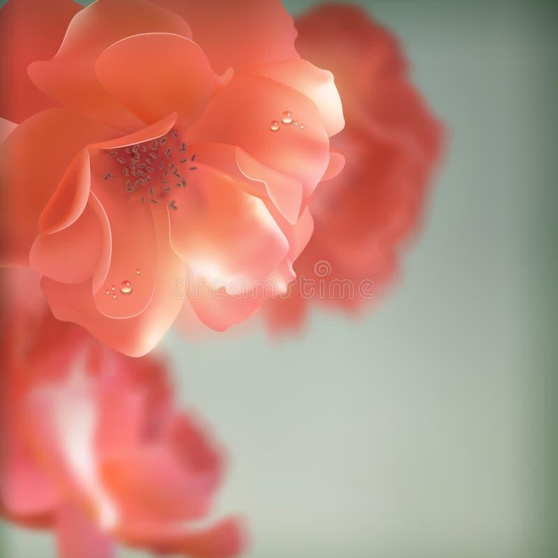 Le vecteur brillant fleurit des roses illustration de vecteur