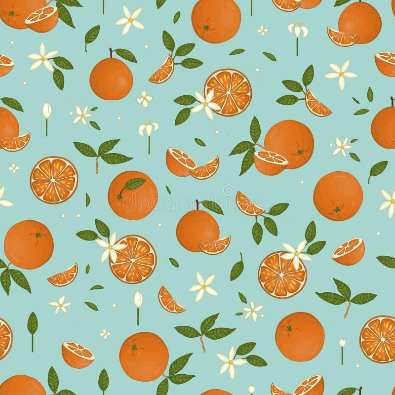 Le vecteur a coloré le modèle sans couture des oranges d'isolement sur le fond en pastel bleu illustration stock