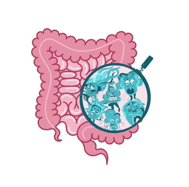 Le vecteur interne Appareil digestif, symbole d'intestin Viscères, vecteur intérieur d'organes Bacterias microscopiques flore mic illustration stock