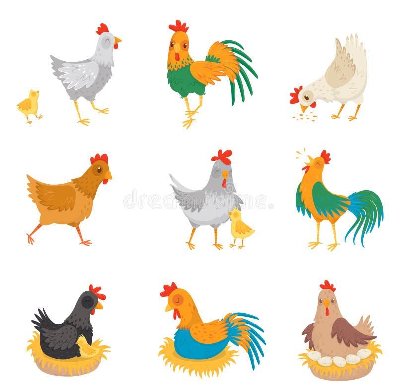 Le vecteur plat a placé avec des poulets, de petits poussins et des coqs Oiseaux de ferme Volaille domestique Éléments pour faire illustration stock