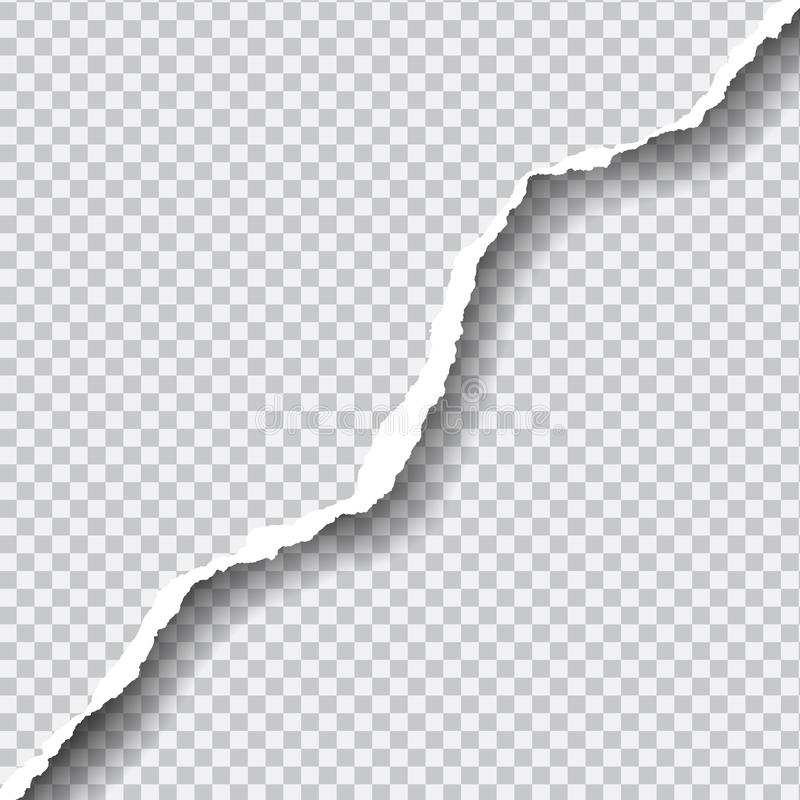 Le vecteur réaliste a déchiré le papier avec l'espace pour votre texte sur le transp illustration de vecteur
