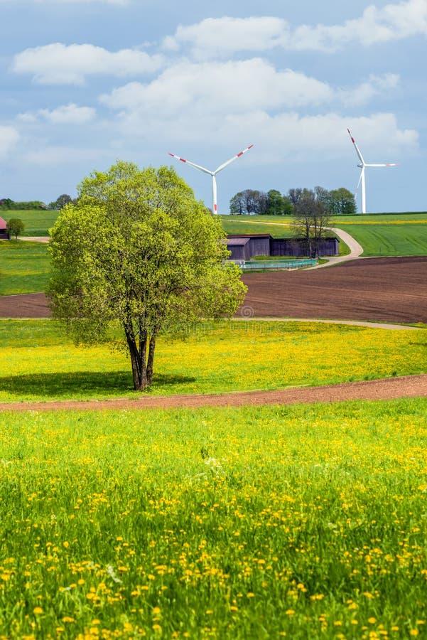 Le vent roulent dedans un environnement rural photographie stock libre de droits