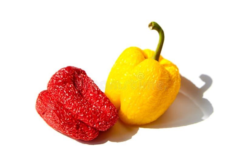 Le verdure guastate, hanno corrugato i peperoni rossi e gialli isolati su bianco fotografie stock