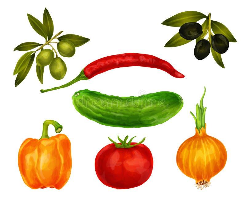 Le verdure hanno isolato l'insieme illustrazione di stock