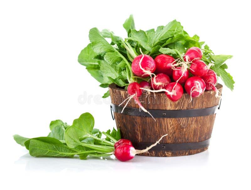 Le verdure mature fresche del ravanello raccolgono in secchio di legno fotografia stock