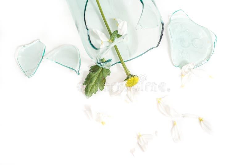 Le verre cassé, une fleur dans un vase cassé Le concept d'amour malheureux, de chagrin et de larmes images stock