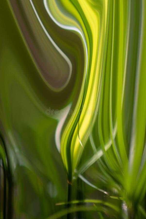 Le vert laisse la forme de vague ondulée liquide de peinture à l'huile, éclat s'est étendu de la légèreté aux tons d'obscurité av photo libre de droits