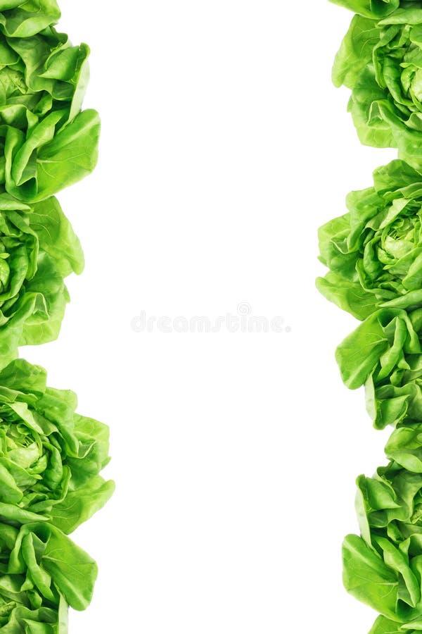 Le vert laisse le cadre images libres de droits