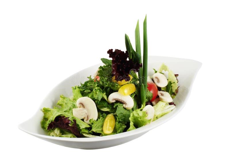 le vert répand salade photographie stock libre de droits