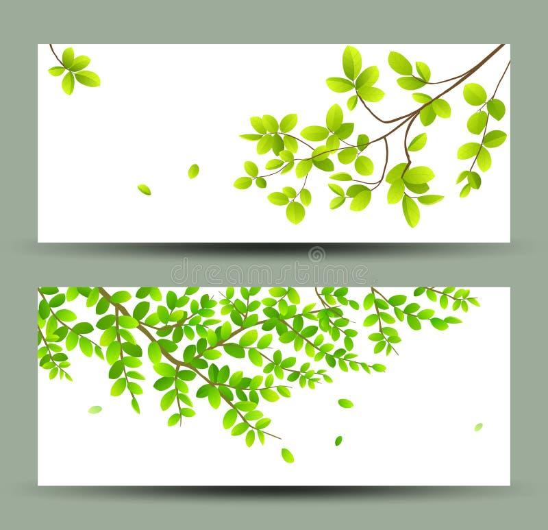 Le vert tropical laisse des collections de bannières illustration libre de droits