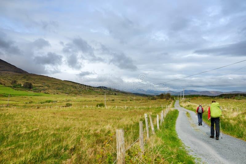Le viandanti salgono a una traccia un giorno nuvoloso nel parco nazionale di Killarney, Irlanda immagini stock
