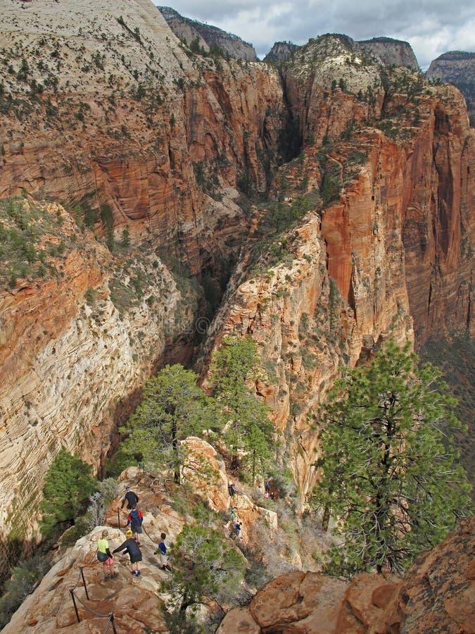 Le viandanti sulla doppia scogliera trascinano alla cima di atterraggio di Angeles del punto di riferimento, Zion National Park,  fotografia stock