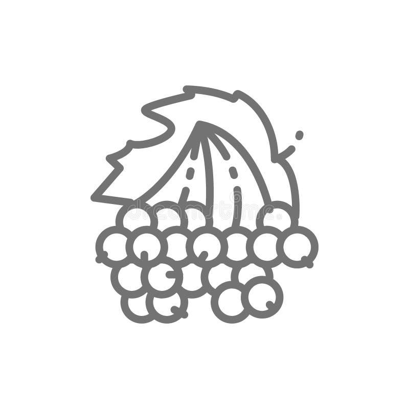 Le Viburnum, guelder s'est levé des baies rayent l'icône illustration de vecteur