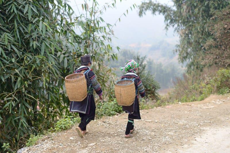 Le Vietnam tribal images libres de droits