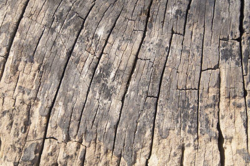 Le vieux bois donne au fond une consistance rugueuse photo stock