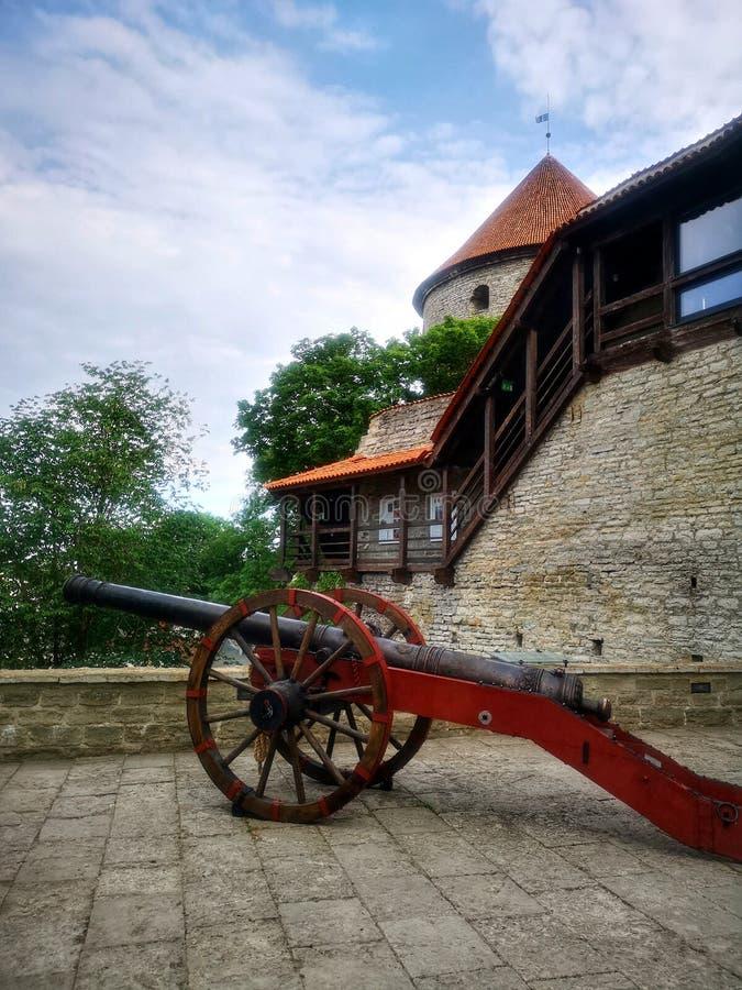 Le vieux centre-ville en Estonie Tallinn photo libre de droits