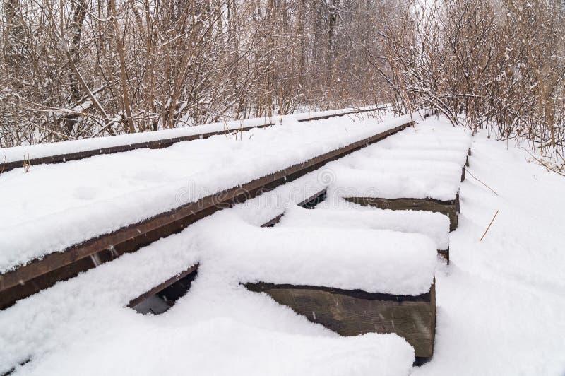 Le vieux chemin de fer abandonné dans le plan rapproché de forêt d'hiver photos libres de droits