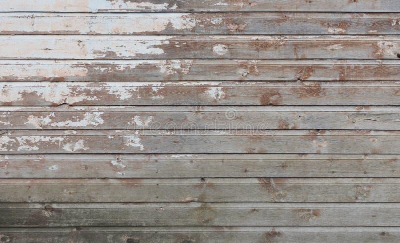 Le vieux mur en bois avec la peinture blanche est sévèrement survécu et peeli image stock