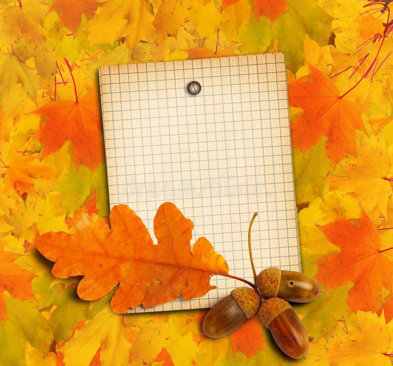 Le vieux papier grunge avec le chêne d'automne part et des glands illustration de vecteur