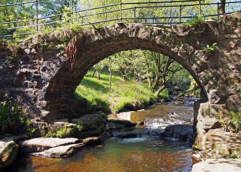 le vieux pont de cheval de bât au trou de lumb tombe une cascade dans la région boisée au doyen de crimsworth près du pecket bien photo stock