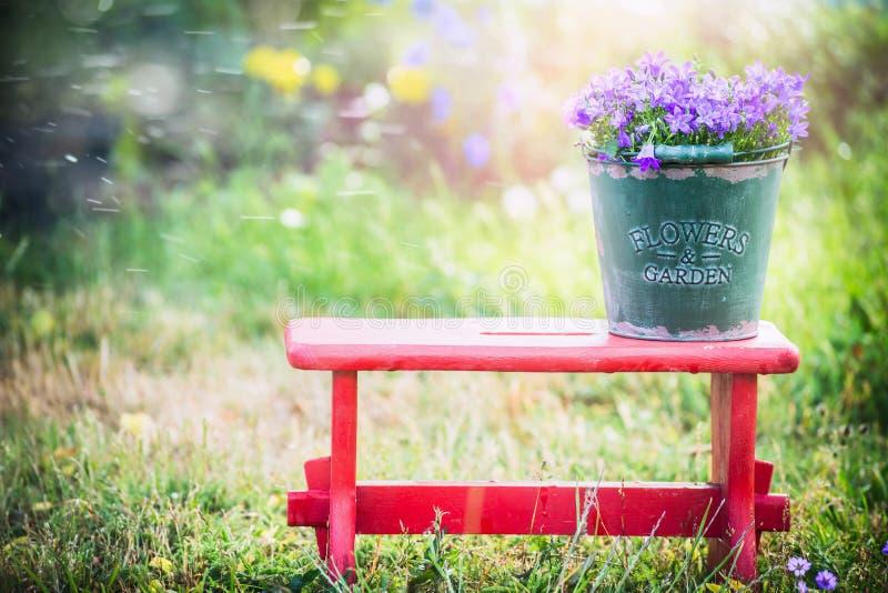 Le vieux seau vert avec la campanule de jardin fleurit sur le petit tabouret rouge au-dessus du fond de nature d'été photos stock