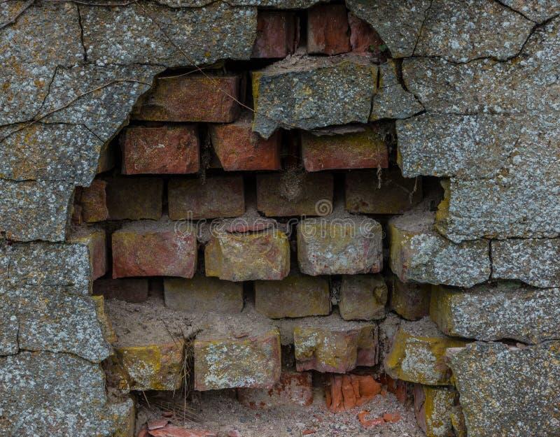 Le vieux tronc de mur de briques et d'arbre photo libre de droits