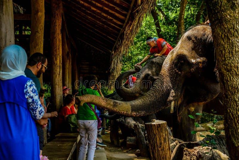 Le village de femme de girafe en Chiang Mai, Tha?lande images stock
